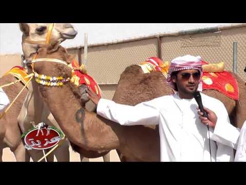 عزبة/ سعيد بن مظفر محمد العامري