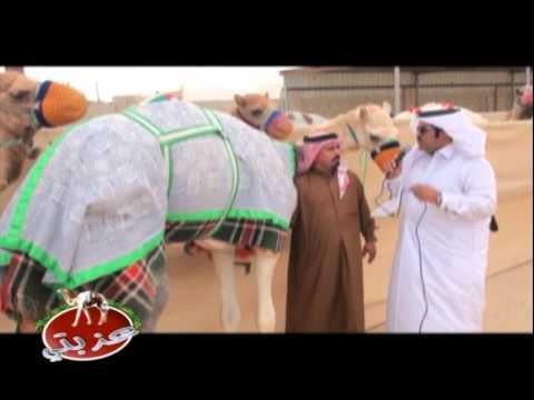عزبة/ محمد بخيت الزعيري